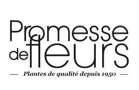 logo promesse